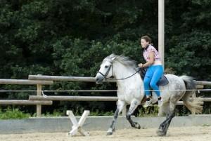 Im Galopp auf's Pferd springen
